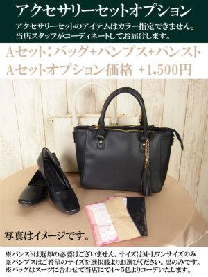 アクセサリーセットオプション:Aセット+1500円