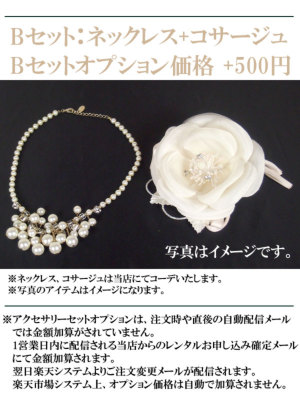 アクセサリーセットオプション:Bセット+500円